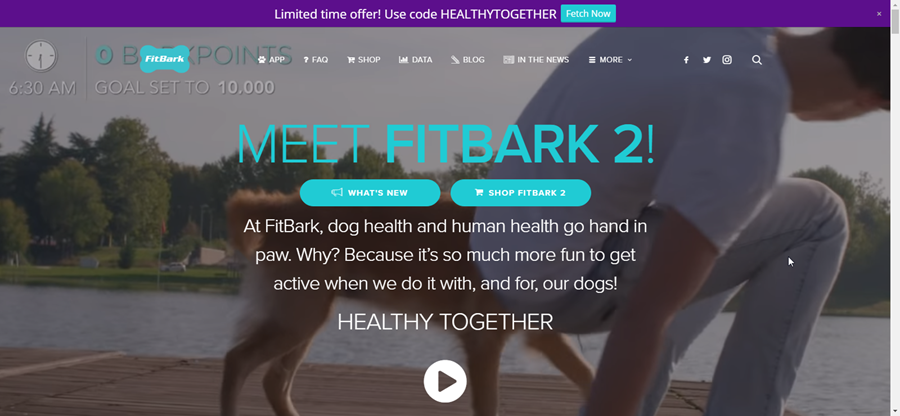 FitBark - affiliate marketing niches