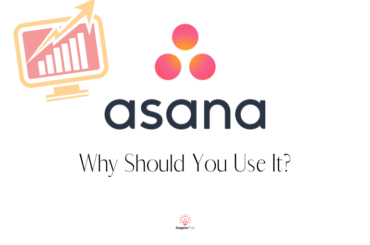 Asana Project Management Review for Bloggers