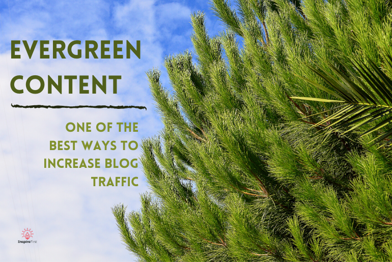 a tree with evergreen content